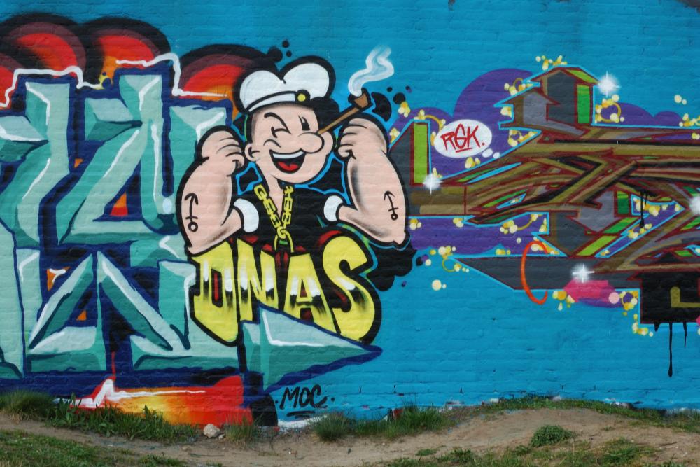Graffiti Boschveldtuin 3 - Den Bosch Tips