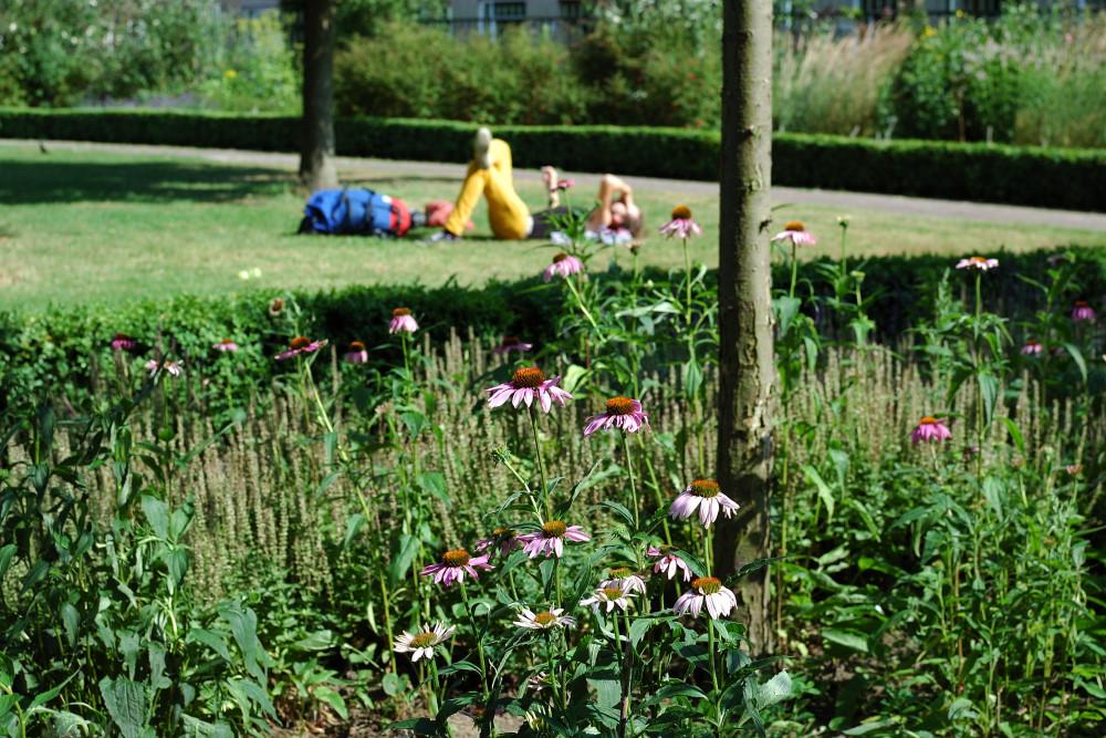 Jeroen Bosch Tuin 5 - Den Bosch Tuin