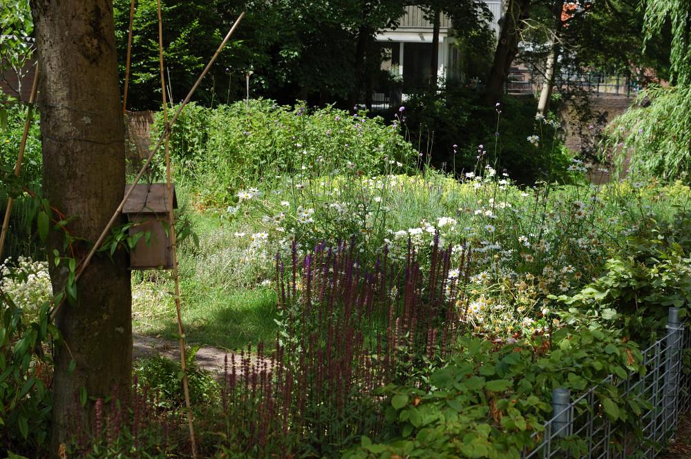 tuin der lusten gemeenschapstuin den bosch tips