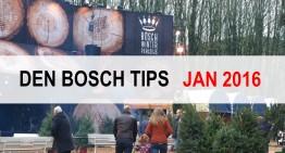 Den Bosch Tips voor januari 2016