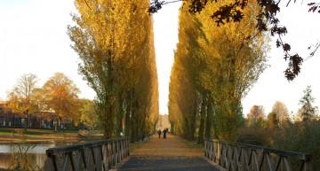 Herfst en Kerst in het Paleiskwartier (fotoserie)