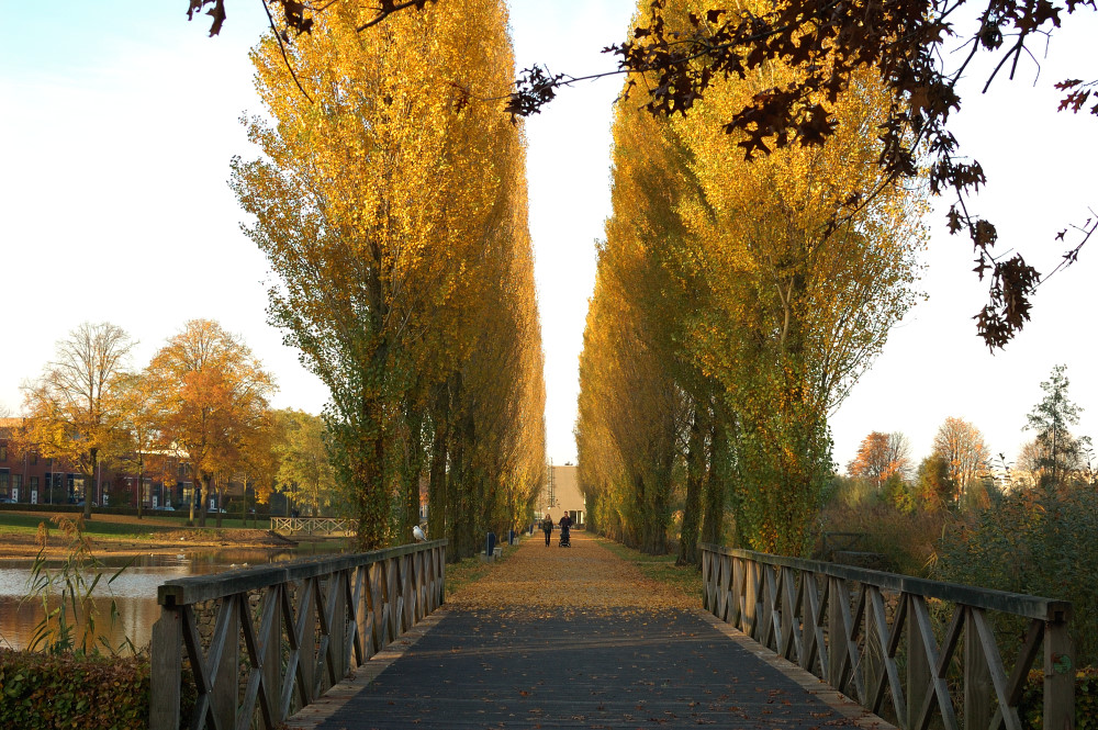 Herfst Paleiskwartier 2 - Den Bosch Tips