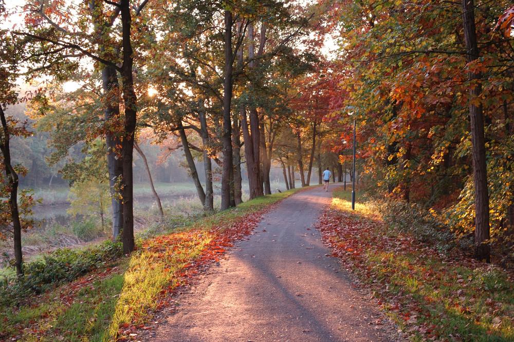 Herfst Paleiskwartier 7 - Den Bosch Tips