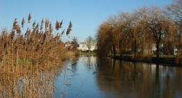 Westerpark: begin van de winter (fotoserie)
