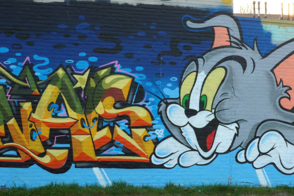 Graffiti Boschveldtuin 1 - Den Bosch Tips