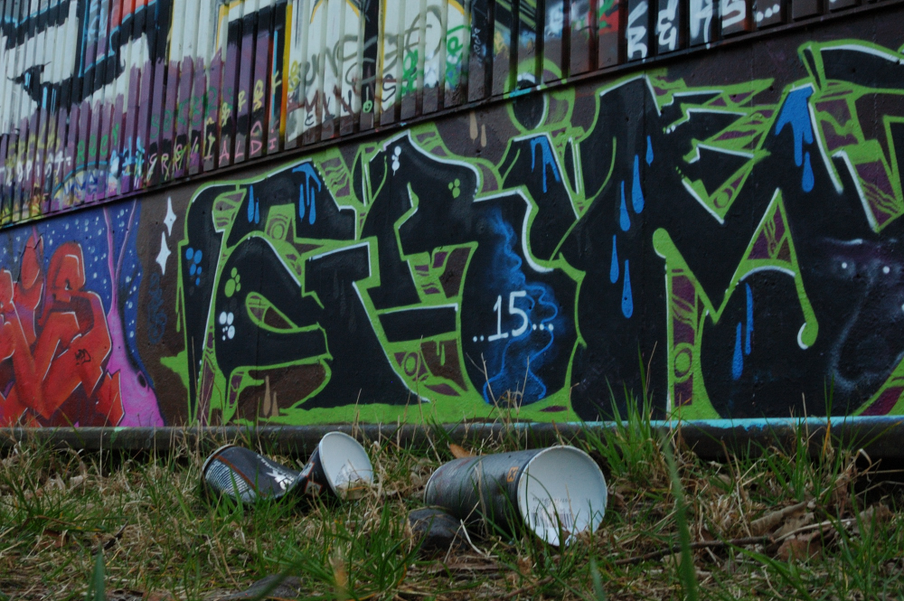 Graffiti Boschveldtuin 16 - Den Bosch Tips