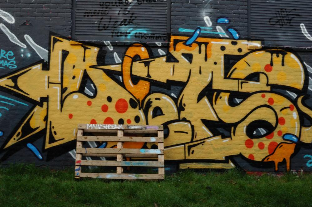 Graffiti Boschveldtuin 7 - Den Bosch Tips