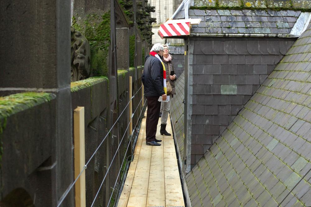 Wonderlijke klim St Jan 37 - Den Bosch Tips
