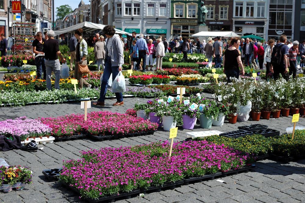 Geraniummarkt 01a - Den Bosch Tips