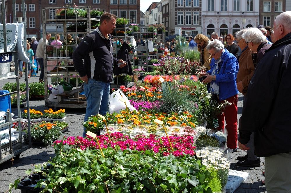 Geraniummarkt 03a - Den Bosch Tips