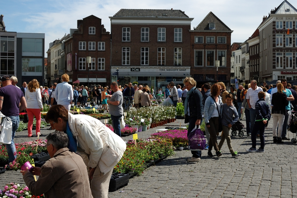 Geraniummarkt 04a - Den Bosch Tips
