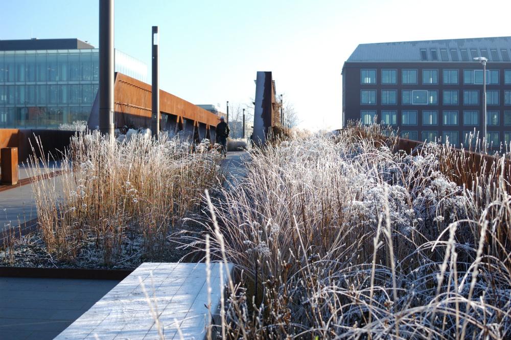 winter-12-s-den-bosch-tips