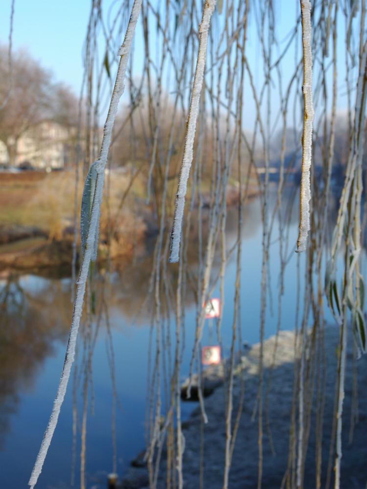 winter-21-s-den-bosch-tips
