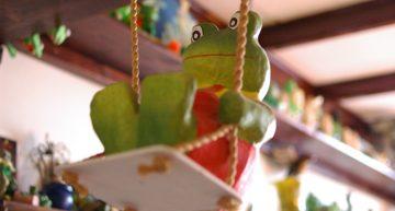 't Opkikkertje: kikkerfestijn aan elke wand